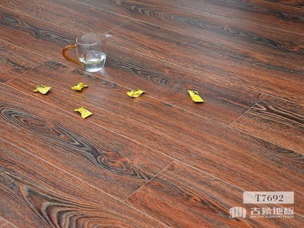 古象强化地板·富贵橡木-T7692