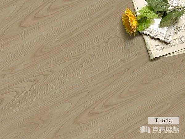 古象强化地板·银花水曲柳-T7645