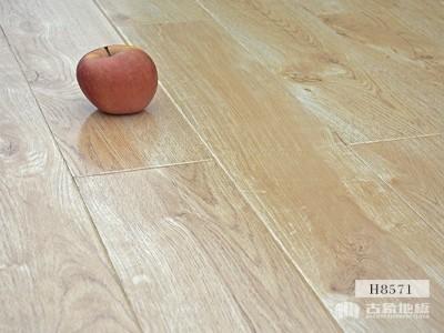 古象强化地板·白露丹枫-H8571