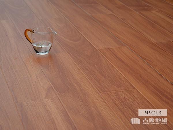 古象强化地板·美国柚木M9213