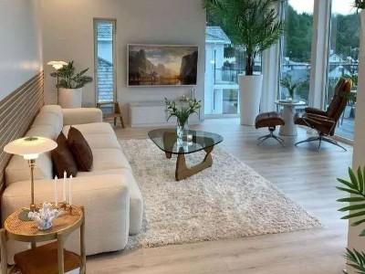 复式单身公寓+木地板