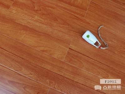 古象强化地板·秋色清榆-F5915