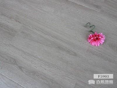 古象强化地板·欧洲灰橡F5903