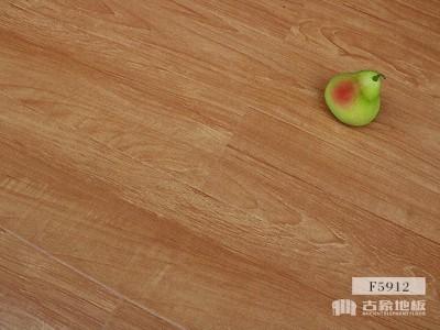 古象强化地板·田园时光-F5912